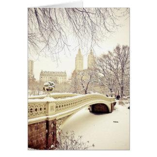 Pretty Snow - New York Holiday Greeting Card