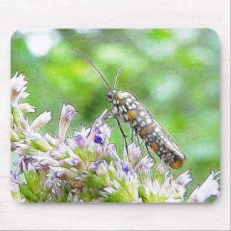 Pretty Spotted Ermine Moth on Agastache Mouse Pad