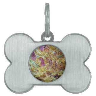 Pretty Spring Fall Leaf Combo Pattern Pet ID Tag