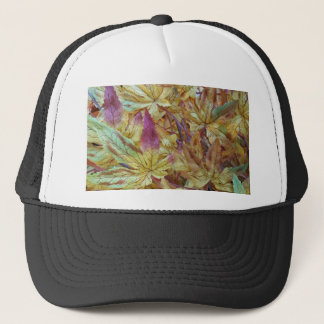 Pretty Spring Fall Leaf Combo Pattern Trucker Hat