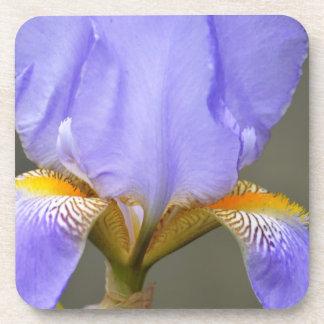 Pretty Spring Iris Flower Drink Coaster