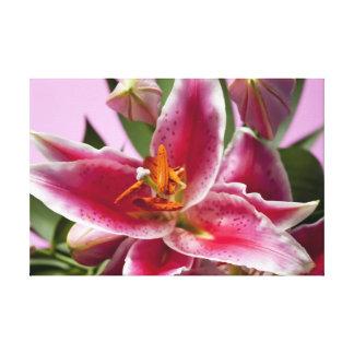 Pretty Stargazer Lilies Stretched Canvas Print