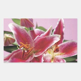 Pretty Stargazer Lilies Rectangular Sticker