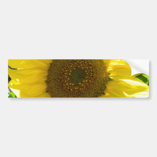 Pretty Sunflower Car Bumper Sticker