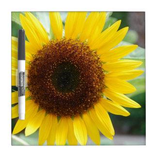 Pretty Sunflower Dry Erase Board
