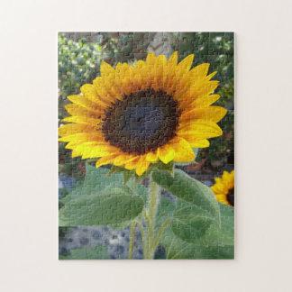 Pretty Sunflower Jigsaw Puzzle