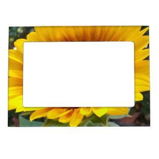 Pretty Sunflower Magnetic Frame