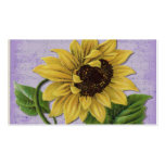 Pretty Sunflower On Sheet Music Double-Sided Standard Business Cards (Pack Of 100)
