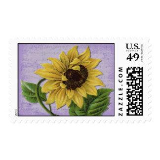 Pretty Sunflower On Sheet Music Postage