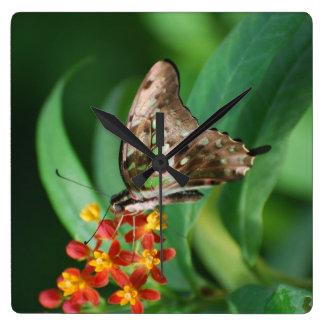 Pretty Swallowtail Butterfly Square Wall Clocks