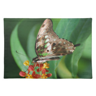 Pretty Swallowtail Butterfly Placemats