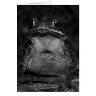 Pretty Toad Card