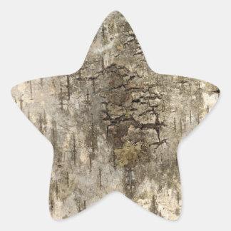 Pretty Tree Bark Star Sticker