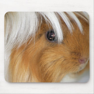 Pretty, Tricolor, Smooth, Guinea Pig Face Mouse Pad