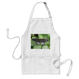 Pretty Tropical Butterfly and Flowers Apron