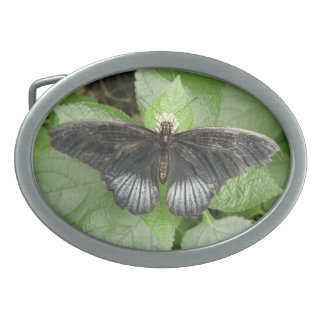 Pretty Tropical Butterfly and Flowers Belt Buckle
