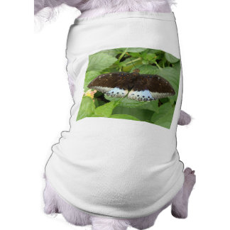 Pretty Tropical Butterfly Dog T Shirt