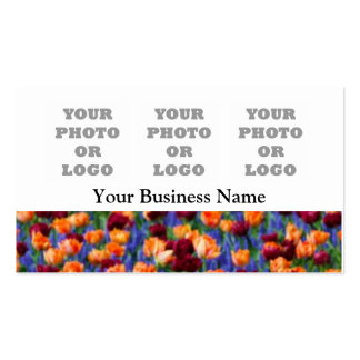 Pretty tulip floral flower photo logo template business card