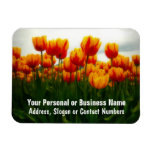 Pretty Tulips in Flower Field Rectangular Magnets