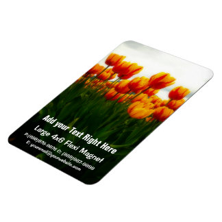 Pretty Tulips in Flower Field Rectangular Photo Magnet