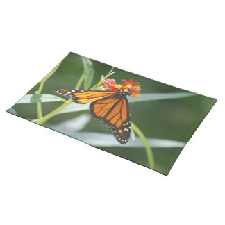 Pretty Viceroy Butterfly Placemats