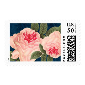 Pretty Vintage Flowers in Coral and Navy Postage