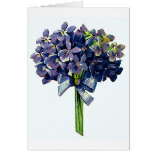 Pretty Violets Greeting Card