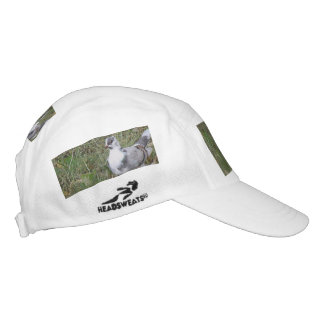 Pretty White and Gray Fancy Feather Footed Pigeon Hat