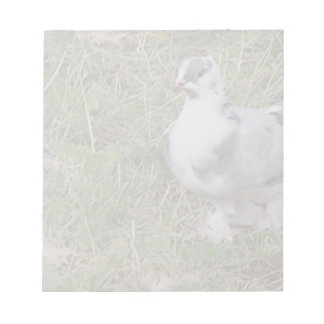 Pretty White and Gray Fancy Feather Footed Pigeon Scratch Pad