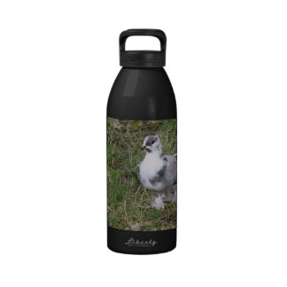 Pretty White and Gray Fancy Feather Footed Pigeon Drinking Bottles