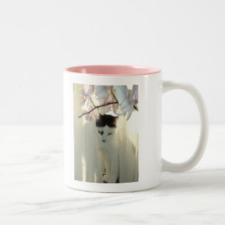 Pretty White Cat Two-Tone Coffee Mug