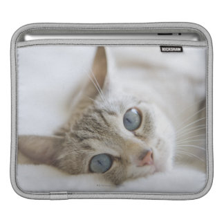 Pretty white cat with blue eyes laying on couch iPad sleeve