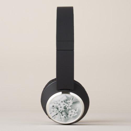 Pretty White Cherry Blossoms. Headphones