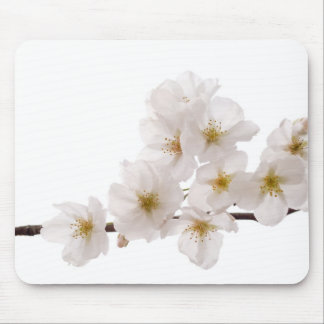 Pretty White Cherry Blossoms Mouse Pad