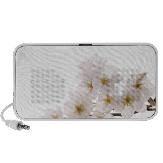 Pretty White Cherry Blossoms Notebook Speaker