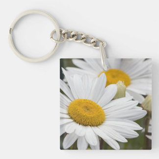 Pretty White Daisies Single-Sided Square Acrylic Keychain