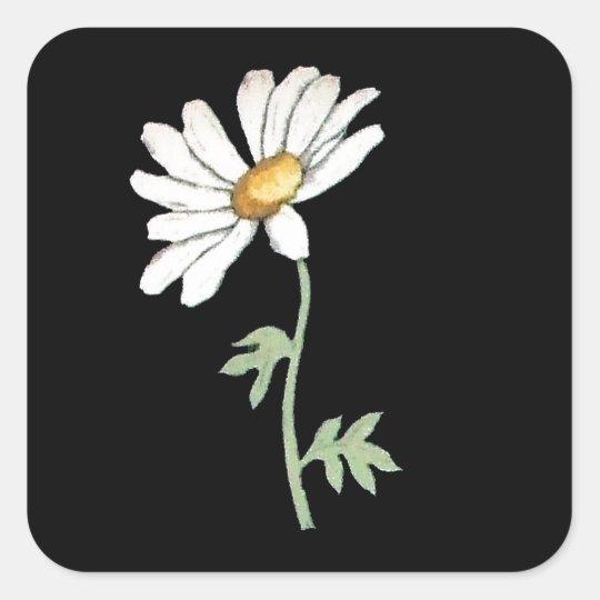 Pretty White Daisy on Black Square Sticker