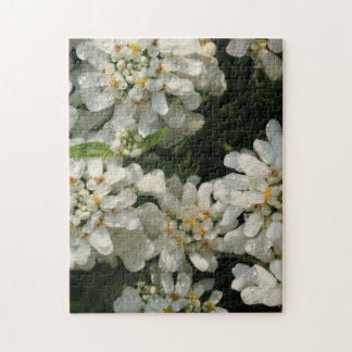 Pretty White Flowers Morning Dew Jigsaw Puzzle