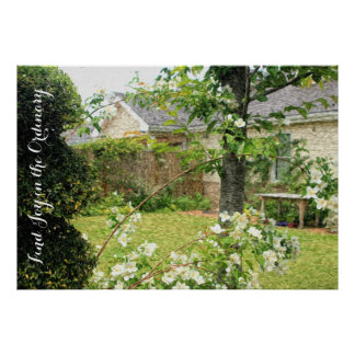 Pretty White House Nice Lawn Flowers Trees Grass Poster