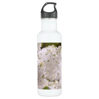 Pretty White Lilacs Photo Stainless Steel Water Bottle