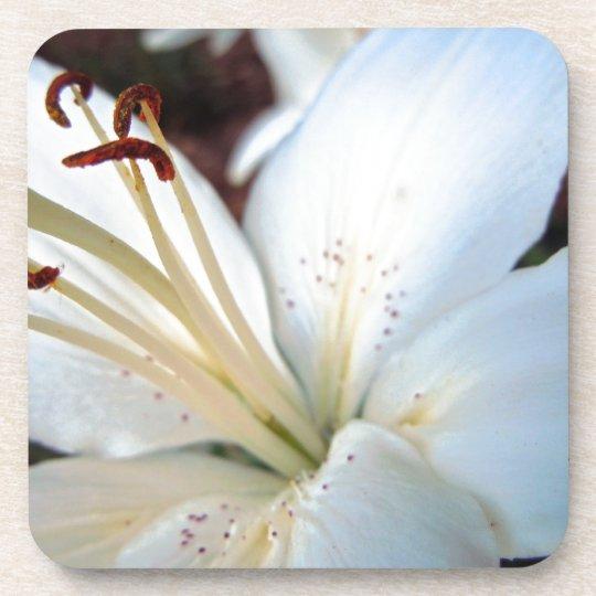 Pretty White Lily Beverage Coaster