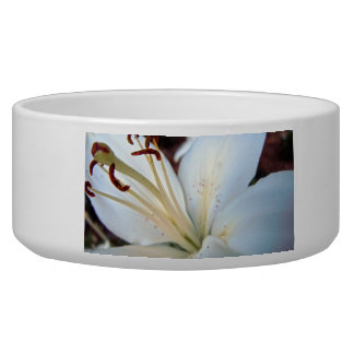 Pretty White Lily Dog Bowls