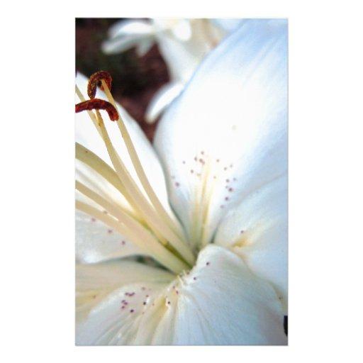Pretty White Lily Stationery