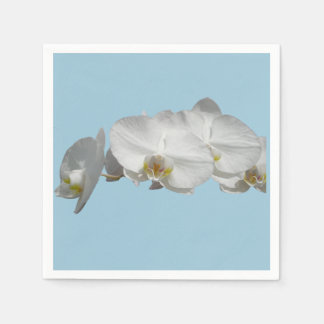 Pretty White Orchid on Light Blue Paper Napkin