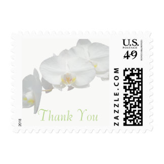 Pretty White Orchid Thank You Postage