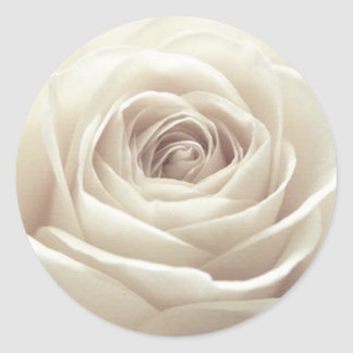 Pretty White Rose Classic Round Sticker