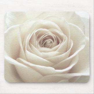 Pretty white rose mouse pad