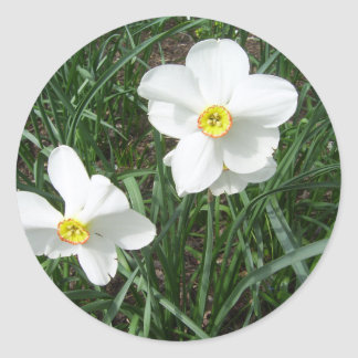 Pretty White Spring Flowers CricketDiane Classic Round Sticker