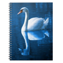 Pretty white swan floating on a blue lake notebook
