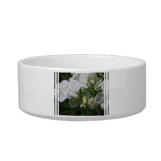 Pretty White Sweet Pea Flowers Cat Bowl